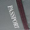 image of Passport Seat Pack reflective logo